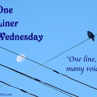One liner Wednesday: Alternative dictionary...